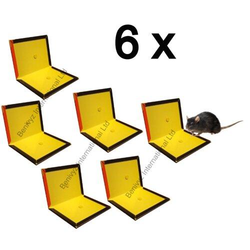 6 X Rat & Mouse Sticky Glue Trap Boards Pest Control - 6 BOARDS