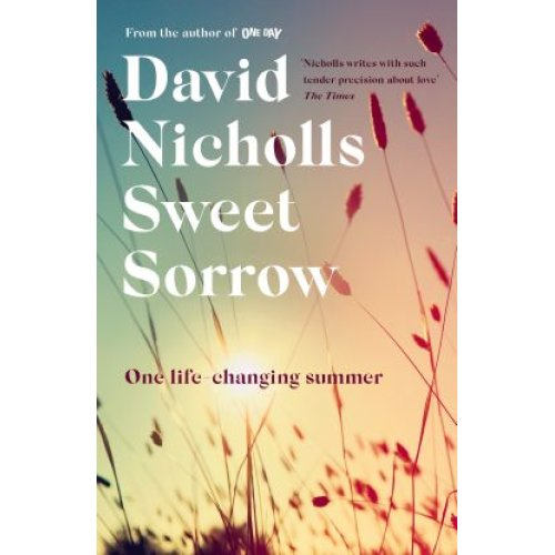 Sweet Sorrow: the long-awaited new novel from the bestselling author of ONE DAY