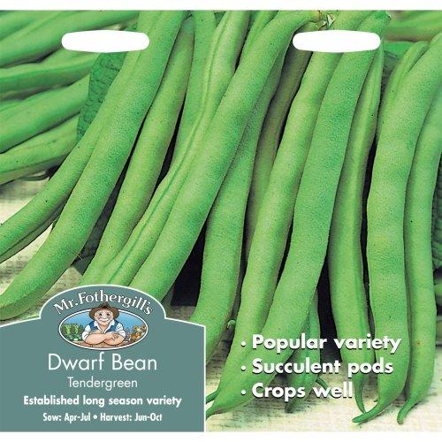 Mr Fothergills - Pictorial Packet - Vegetable - Dwarf Bean Tendergreen - 125 Seeds
