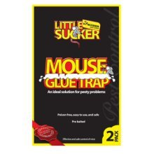 2pk Little Sucker Mouse Glue Trap   Sticky Mouse Traps