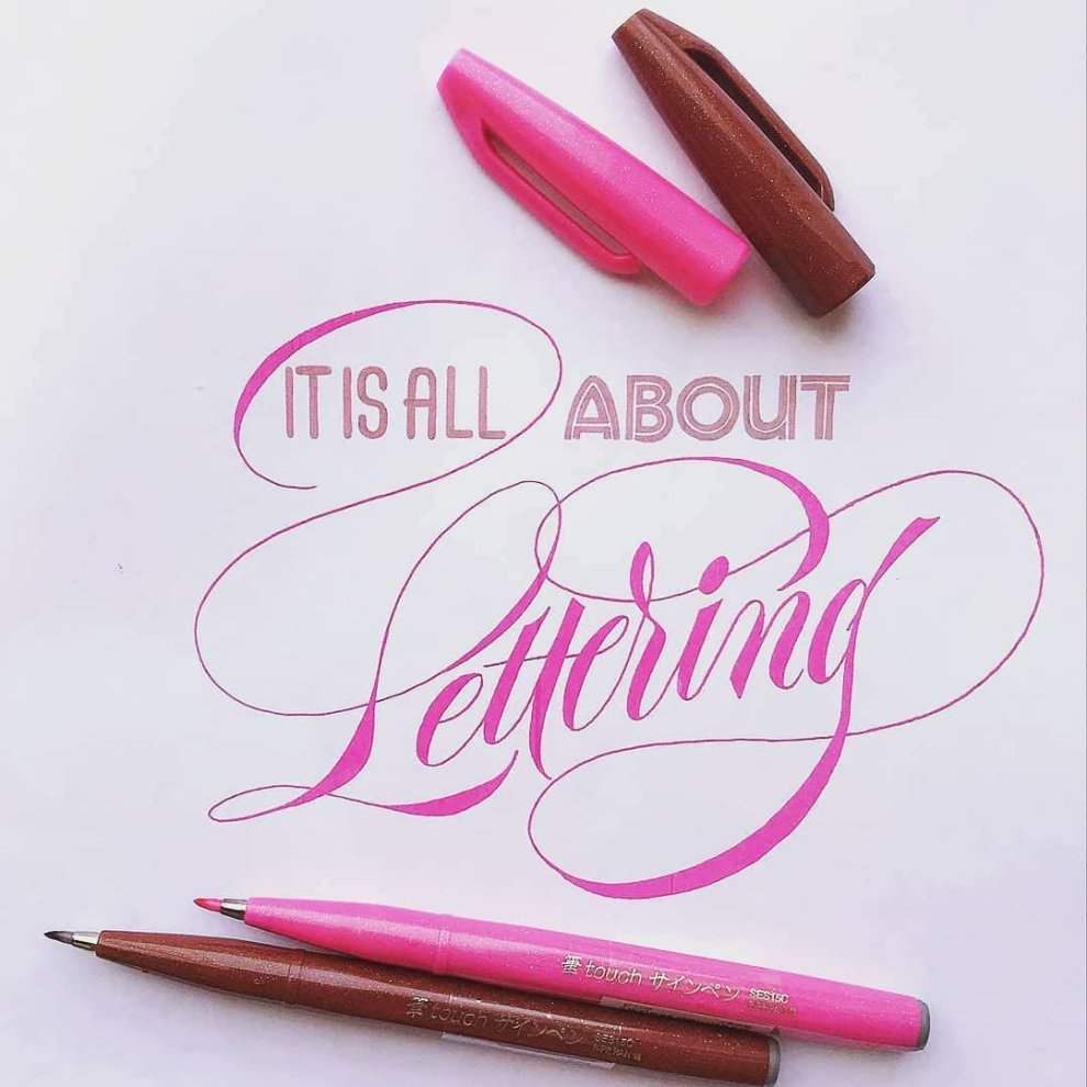 Pentel Brush Sign Pen 10 pieces taschina 6 pz colori artist