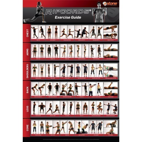 Ripcords Exercise Guide Poster Resistance Band Workout Chart