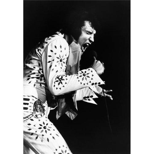 Elvis On Tour Elvis Presley 1972 Photo Print, 8 x 10
