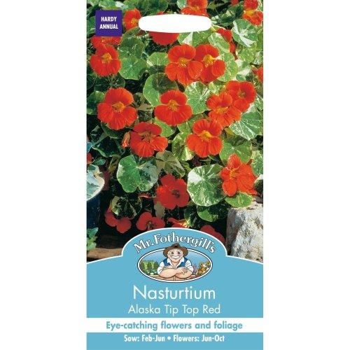 Mr Fothergills - Pictorial Packet - Flower - Nasturtium Alaska Tip Top Red - 25 Seeds