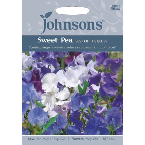 Johnsons Seeds - Pictorial Pack - Flower - Sweet Pea The Best of the Blues - 25 Seeds