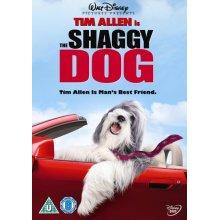 The Shaggy Dog [DVD] - Used