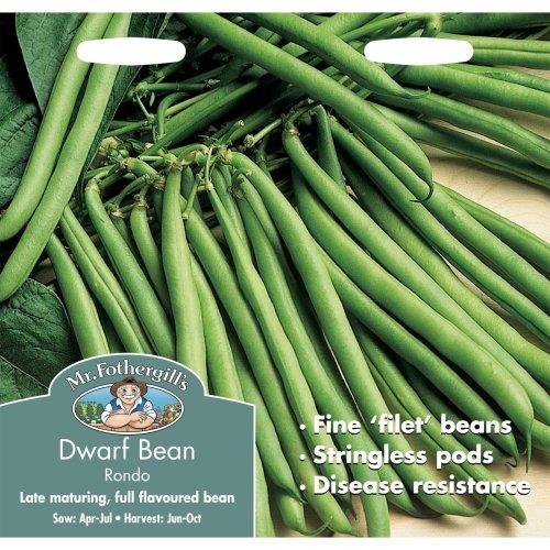 Mr Fothergills - Pictorial Packet - Vegetable - Dwarf Bean Rondo - 100 Seeds