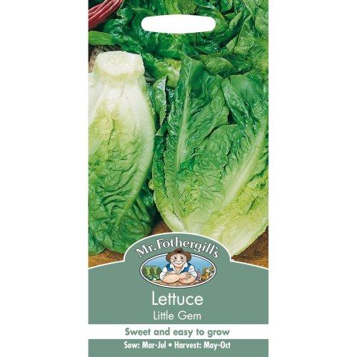Mr Fothergills - Pictorial Packet - Vegetable - Lettuce Little Gem - 1250 Seeds