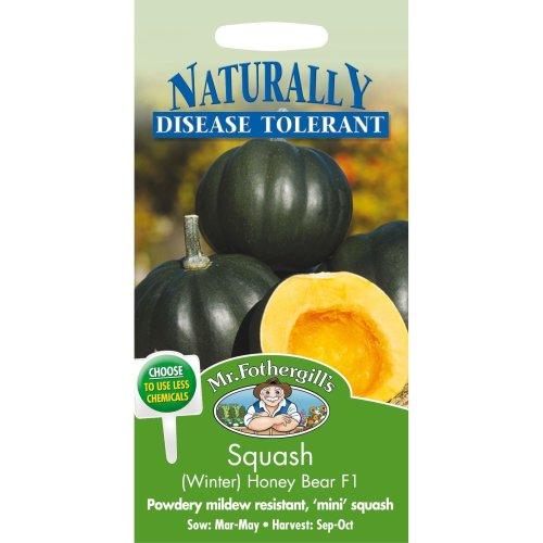 Mr Fothergills - Pictorial Packet - Vegetable - Squash Honey Bear F1 - 10 Seeds