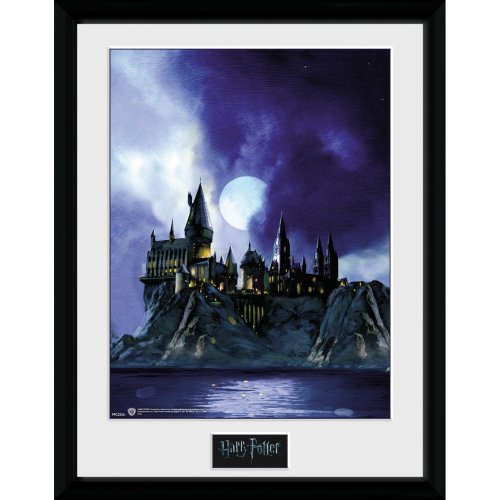 Harry Potter Hogwarts Painted Collector Print