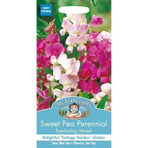 Mr Fothergills - Pictorial Packet - Flower - Sweet Pea  Perennial Everlasting Mixed  - 20 Seeds