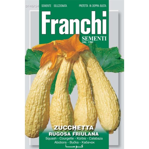 Franchi Seeds of Italy - DBO 146/54 - Courgette - Rugosa Friulana - Seeds