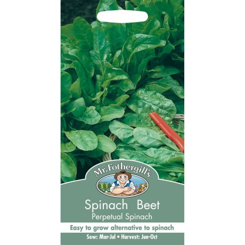 Mr Fothergills - Pictorial Packet - Vegetable - Spinach Beet Perpetual Spinach - 250 Seeds