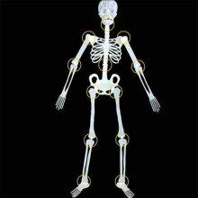 Outdoor Luminous Hanging Skeleton Prop For Halloween Parties - 90cm