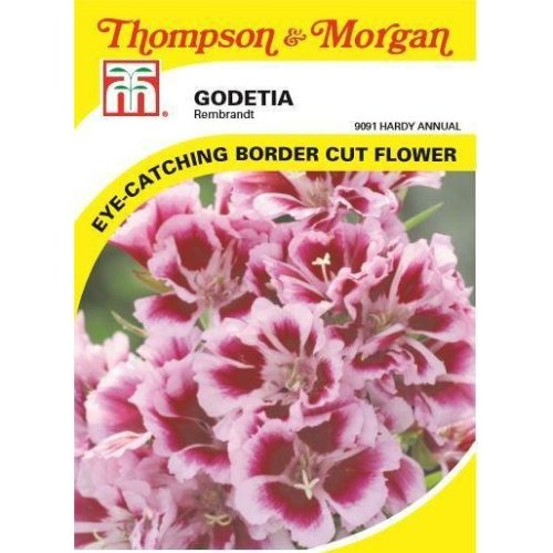 Thompson & Morgan - Flowers - Godetia Rembrandt - 400 Seed