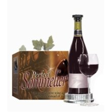 The Perfect Sommelier Wine Improver - Chrome