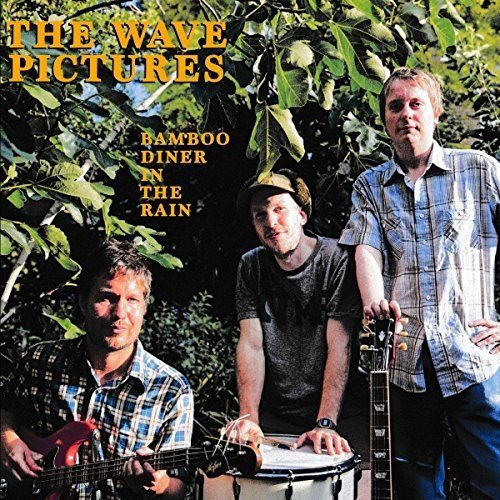 The Wave Pictures - Bamboo Diner in the Rain [CD]