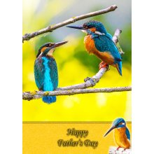 """Kingfisher Father's Day Greeting Card 8""""x5.5"""""""