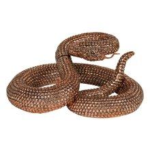 Bronze Coiled Rattlesnake