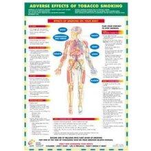 Smoking Health Awareness Poster
