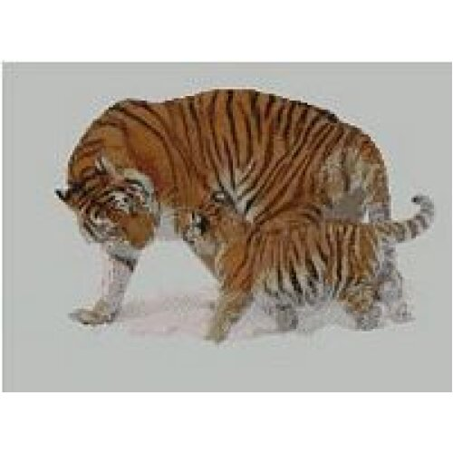 """Tiger and Cub Counted Cross Stitch Kit 15"""" x 11"""""""
