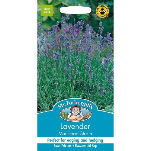 Mr Fothergills - Pictorial Packet - Herb - Lavender Munstead Strain - 150 Seeds