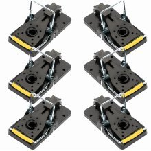 Cookey Mouse Trap 6 Pack Spring-loaded Bar Trap Kill Catch Mice