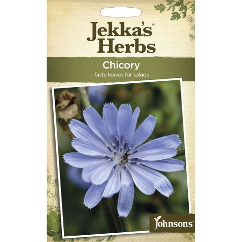 Johnsons - Jekka's Herbs - Pictorial Pack - Chicory - 140 Seeds