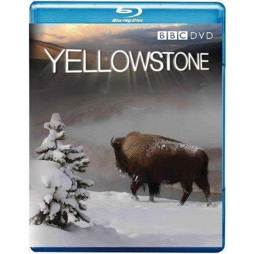 Yellowstone Blu-Ray [2009]