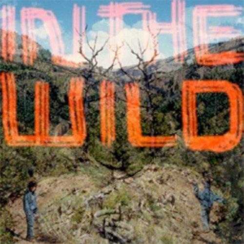Faltydl - in the Wild [CD]