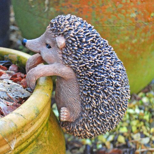 Pot Hugging Hedgehog Garden Animal Ornament