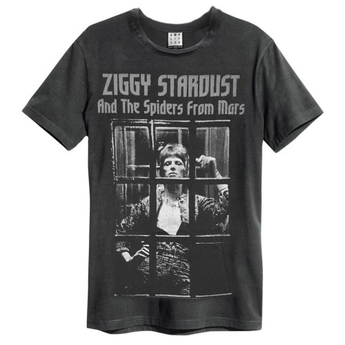 David Bowie 'The Rise And Fall' (Charcoal) T-Shirt - Amplified Clothing