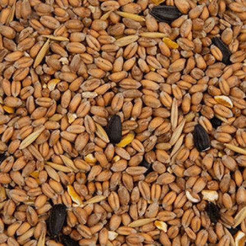 (12.55kg) Wild Bird Seed Outdoor Nutritional Bird Seed Mix