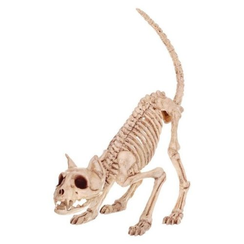 7 x 6 x 20 in. Skeleton Kitty Bonez Halloween Decoration  Bone