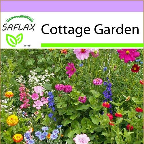 SAFLAX  - Cottage Garden - 21 Sorten - 1000 seeds