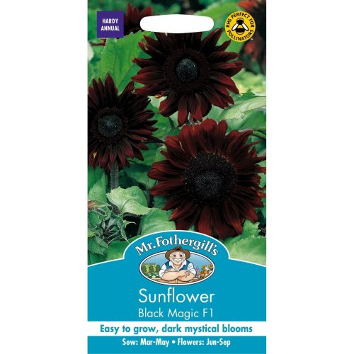 Mr Fothergills - Pictorial Packet - Flower - Sunflower Black Magic F1 - 20 Seeds