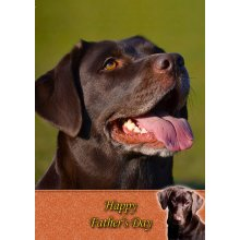 """Chocolate Labrador Father's Day Greeting Card 8""""x5.5"""""""