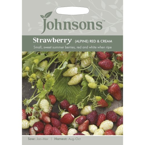 Johnsons Seeds - Pictorial Pack - Vegetable - Strawberry (Alpine) Red & Cream - 150 Seeds