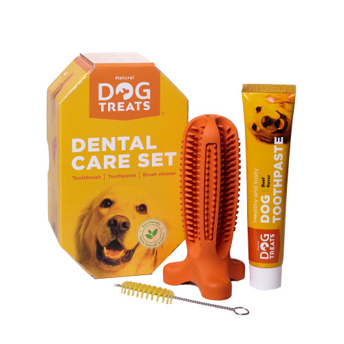 (Set for Medium Sized Dog Breeds) Natural Dog Treats Toothbrush Stick, Dog Chew Toy and Toothpaste Beef Flavour Dental Cleaning Set