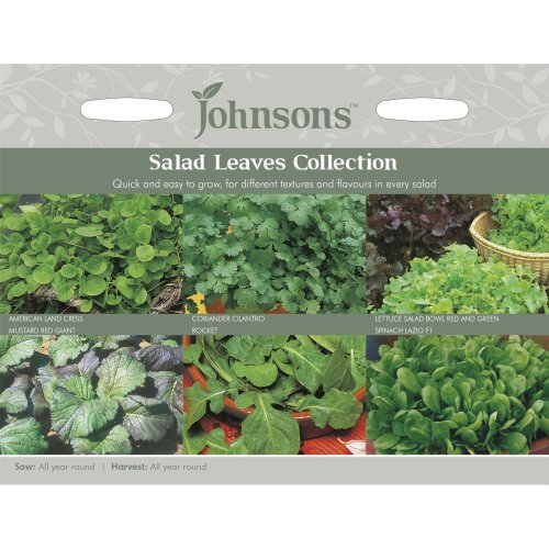 Johnsons Seeds - Pictorial Pack - Vegetable - Salad Leaves Collection