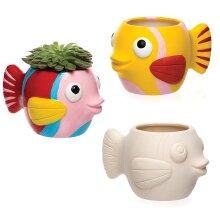 Fish Ceramic Flowerpots (Box of 2)