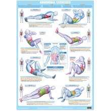 Abdominal And Core Muscles Floor Exercise Chart