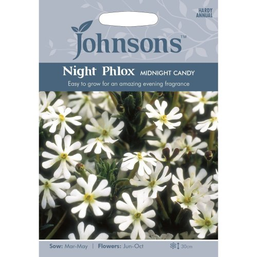 Johnsons Seeds - Pictorial Pack - Flower - Night Phlox Midnight Candy - 250 Seeds
