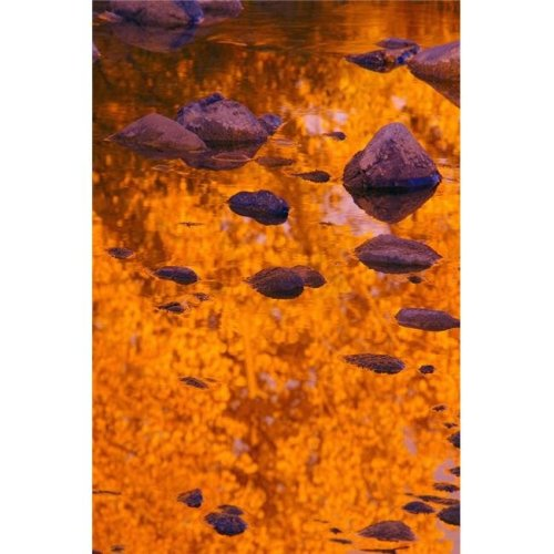 Autumn Reflections Poster Print by Carson Ganci, 22 x 34 - Large