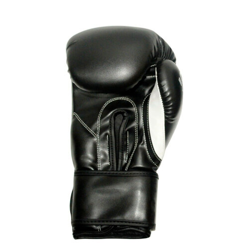 (Aasta (Black BG) 10 oz) Aasta Black Boxing Gloves