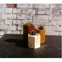Bonsai/Cactus Succulent Planters x 3 Handmade by whatknots