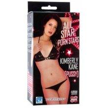 All Star Porn Stars Kimberly Kane UR3 Pocket Pussy Masturbator