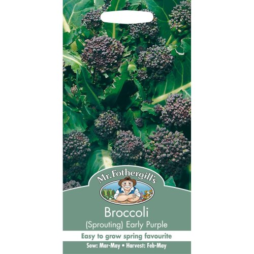Mr Fothergills - Pictorial Packet - Vegetable - Broccoli Early Purple Sprouting - 500 Seeds