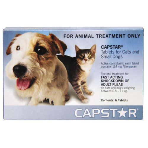 Capstar Tablets For Cats & Dogs Oral Flea Treatment <11mg x 6 Pack