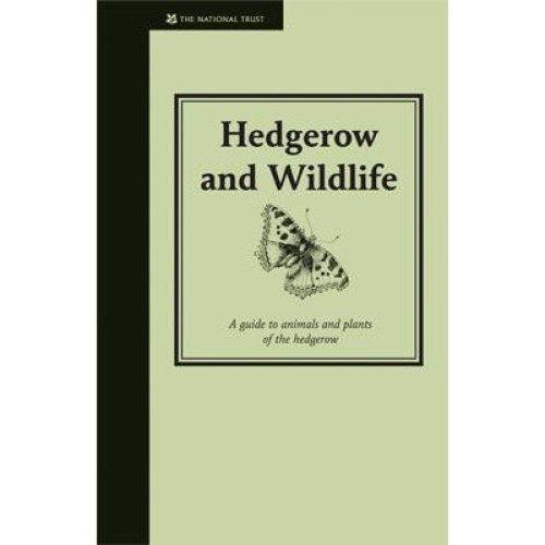 Hedgerow and Wildlife